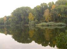 Paisaje natural con la reflexión de espejo hermosa de árboles en el río imágenes de archivo libres de regalías