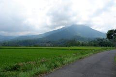 Paisaje natural de la montaña imagen de archivo libre de regalías
