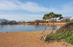 Paisaje natural de la roca y del océano de Ibiza foto de archivo