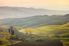Paisaje natural de Sunny Autumn - campos ondulados en la salida del sol Fotografía de archivo