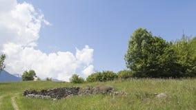 Paisaje natural hermoso con la hierba verde, un camino de tierra, soporte Imagen de archivo
