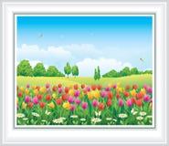 Paisaje natural Prado de la flor con los tulipanes y la manzanilla libre illustration