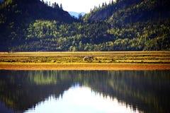 Paisaje, naturaleza, China, Tíbet Imagen de archivo