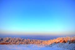 Paisaje nebuloso del invierno Imagen de archivo