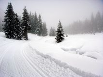 Paisaje nevado Imagen de archivo