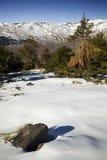 Paisaje Nevado Foto de archivo