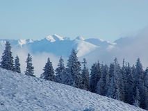 Paisaje Nevado Fotos de archivo libres de regalías