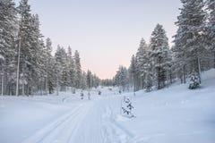 Paisaje Nevado en Laponia Foto de archivo