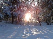 Paisaje Nevado y el sol Fotos de archivo libres de regalías
