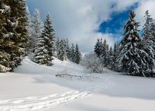 Paisaje nevoso de la montaña del invierno Fotografía de archivo libre de regalías