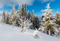 Paisaje nevoso de la montaña del invierno Imagenes de archivo