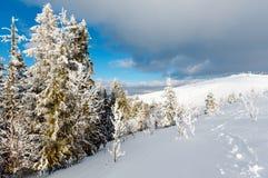 Paisaje nevoso de la montaña del invierno Imágenes de archivo libres de regalías