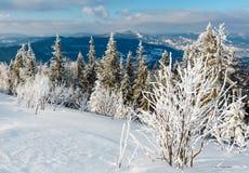 Paisaje nevoso de la montaña del invierno Imagen de archivo