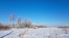 Paisaje nevoso del invierno ruso severo, día escarchado metrajes