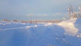 Paisaje nevoso del invierno ruso severo, día escarchado almacen de video