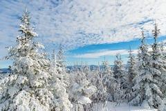 Paisaje nevoso hermoso en Quebec, Canadá fotos de archivo