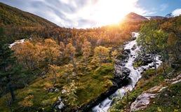 Paisaje noruego del otoño Fotografía de archivo