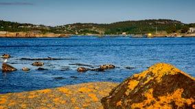 Paisaje noruego hermoso por el océano en Sandefjord, Noruega Foto de archivo libre de regalías