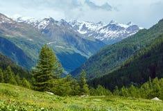 Paisaje nublado de la montaña del verano (Suiza) Fotos de archivo libres de regalías