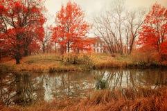 Paisaje nublado del otoño en tonos ilustrados Fotografía de archivo