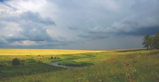 Paisaje nublado del verano con el campo del río y de trigo imagen de archivo