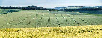 Paisaje ondulado del panorama del cuento de hadas Imagen de archivo