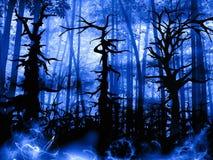 Paisaje oscuro del bosque con los árboles torcidos viejos Imagen de archivo