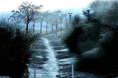 paisaje oscuro iluminado Imagenes de archivo