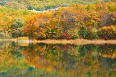Paisaje otoñal con el lago Imágenes de archivo libres de regalías