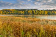 Paisaje otoñal con el lago y las plantas con colores otoñales Imagen de archivo