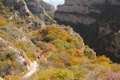 Paisaje otoñal de la montaña Foto de archivo