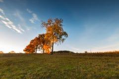 Paisaje otoñal hermoso de la puesta del sol Foto de archivo libre de regalías