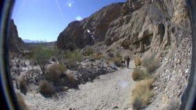 Paisaje PAN Borrego Desert Ca del rastro del desierto almacen de video