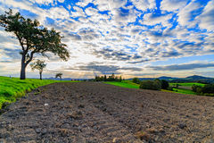 Paisaje panorámico de colinas de color verde amarillo coloridas con el camino de tierra, el cielo azul y las nubes Fotos de archivo