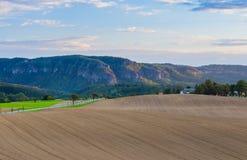 Paisaje panorámico de colinas de color verde amarillo coloridas con el camino de tierra, el cielo azul y las nubes Imágenes de archivo libres de regalías