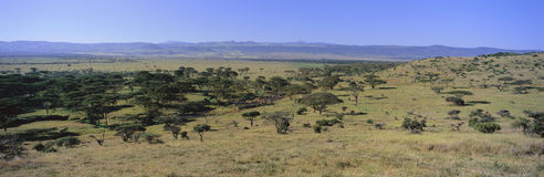Paisaje panorámico de la conservación de Lewa, Kenia, África con el monte Kenia en la visión Fotografía de archivo