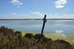 Paisaje pantanoso Fotos de archivo