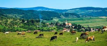 Paisaje pastoral de Rumania fotos de archivo