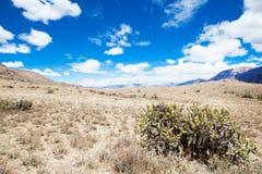 Paisaje Perú fotografía de archivo libre de regalías