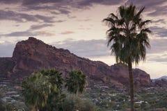 Paisaje Phoenix, Arizona, los E.E.U.U. del desierto Imagen de archivo
