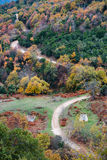 Paisaje pintoresco del bosque Fotografía de archivo