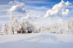 Paisaje pintoresco del invierno en el pueblo cárpato Fotografía de archivo