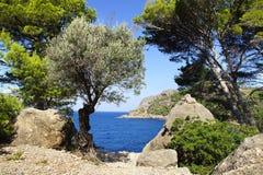 Paisaje pintoresco del mar con la bahía Mallorca Imagenes de archivo