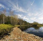 Paisaje pintoresco del otoño con las hojas en el agua Imagen de archivo