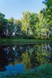 Paisaje pintoresco del verano con una superficie del espejo de una charca y Foto de archivo