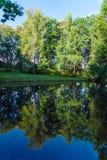 Paisaje pintoresco del verano con una superficie del espejo de una charca y Foto de archivo libre de regalías
