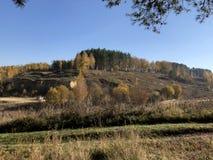 Paisaje pintoresco en un día soleado del otoño: brisas amarilleadas y pinos verdes en una colina brillante rocosa, troncos masivo imagenes de archivo