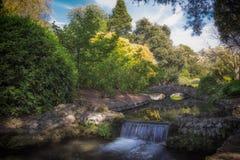 Paisaje pintoresco idílico con la cascada y la piedra hermosa foto de archivo