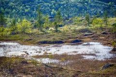 paisaje polar septentrional de la tundra de la montaña Imagen de archivo