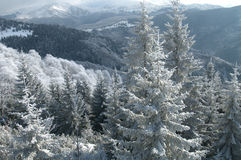 Paisaje prístino del invierno Imagen de archivo libre de regalías